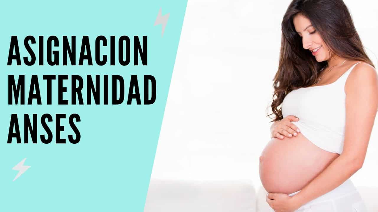 asignacion maternidad de anses