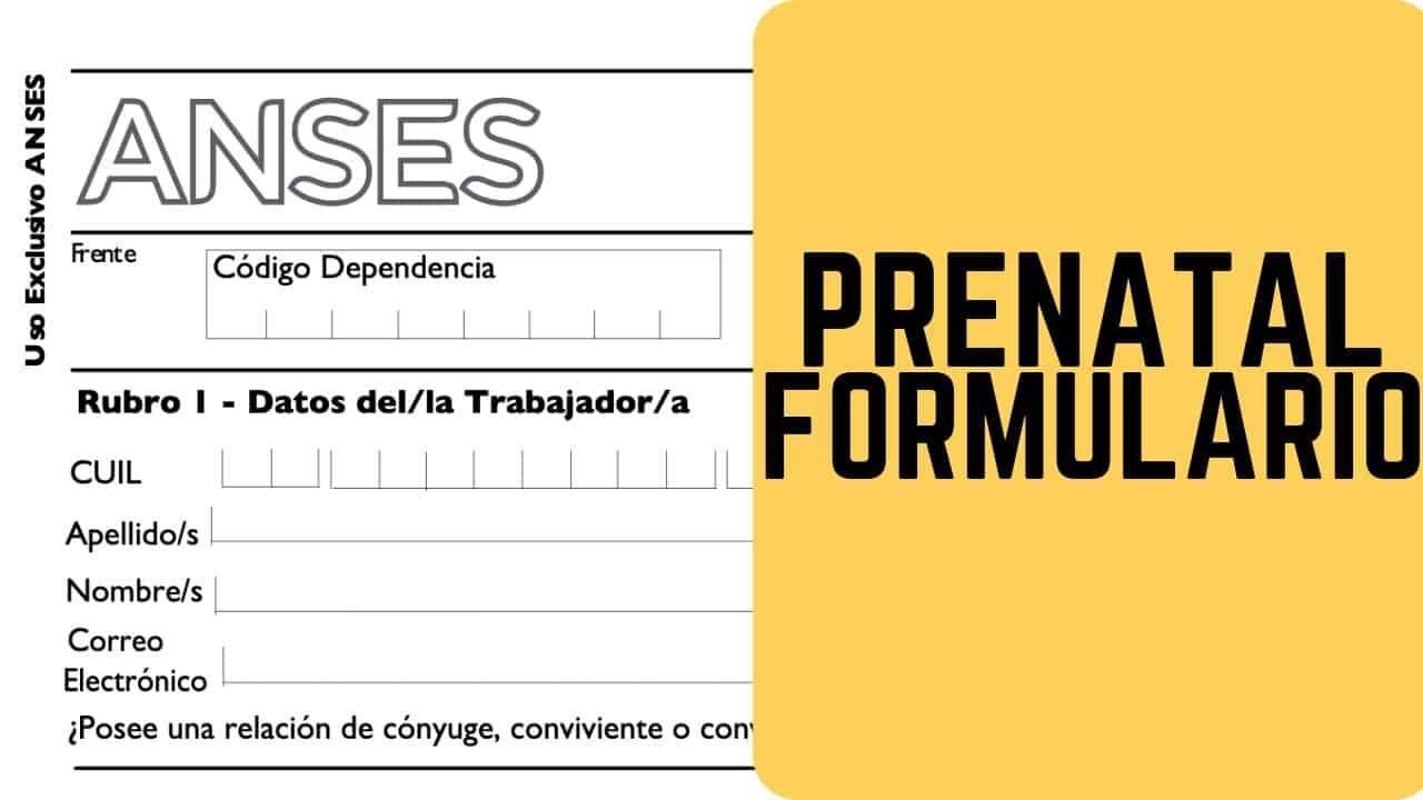 llenar el formulario prental anses