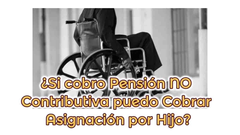 Compatibilidades de Pensión NO Contributiva