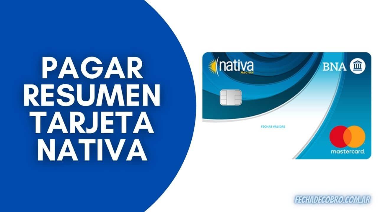 pagar resumen tarjeta nativa nacion